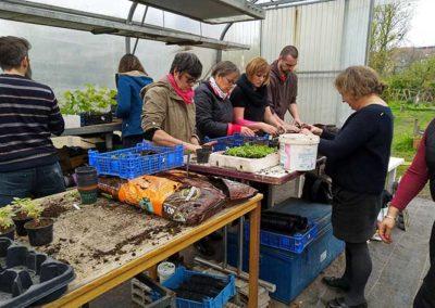 Ateliers semis repiquage - février 2019