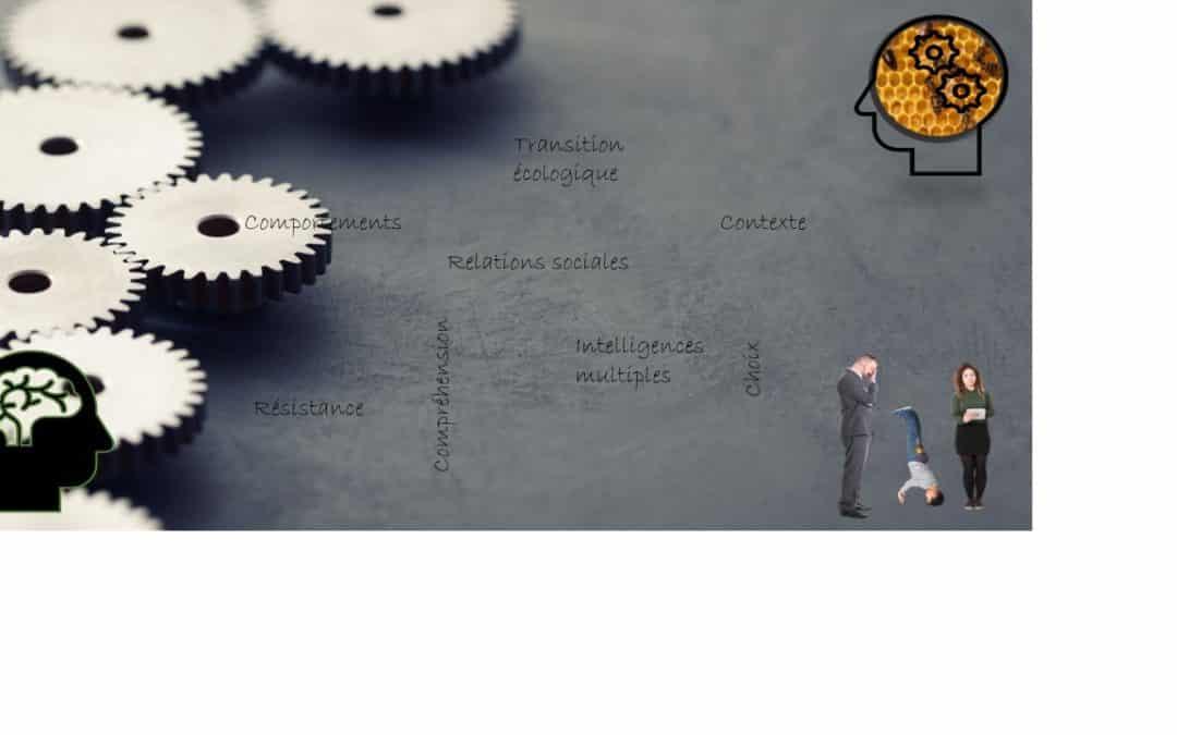 """Webinaire – """"les changements de comportement avec la psychologie sociale"""" – 28.05.2020 à 13h30"""