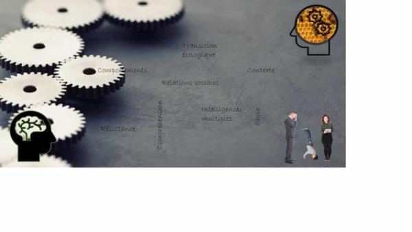 Visio-conférence Changements de comportement