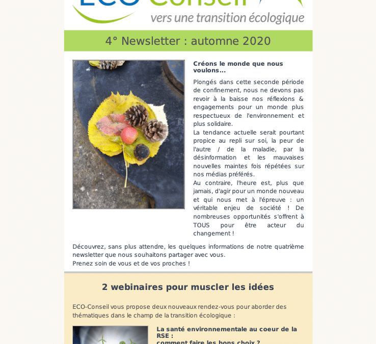4° newsletter d'ECO-Conseil