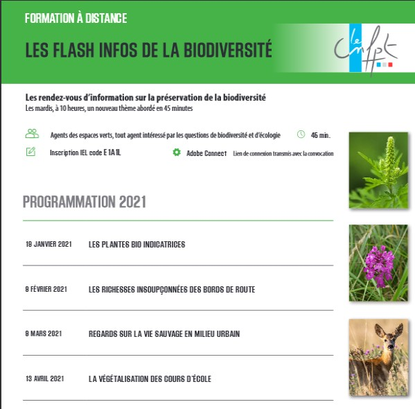 Flash-info Biodiversité