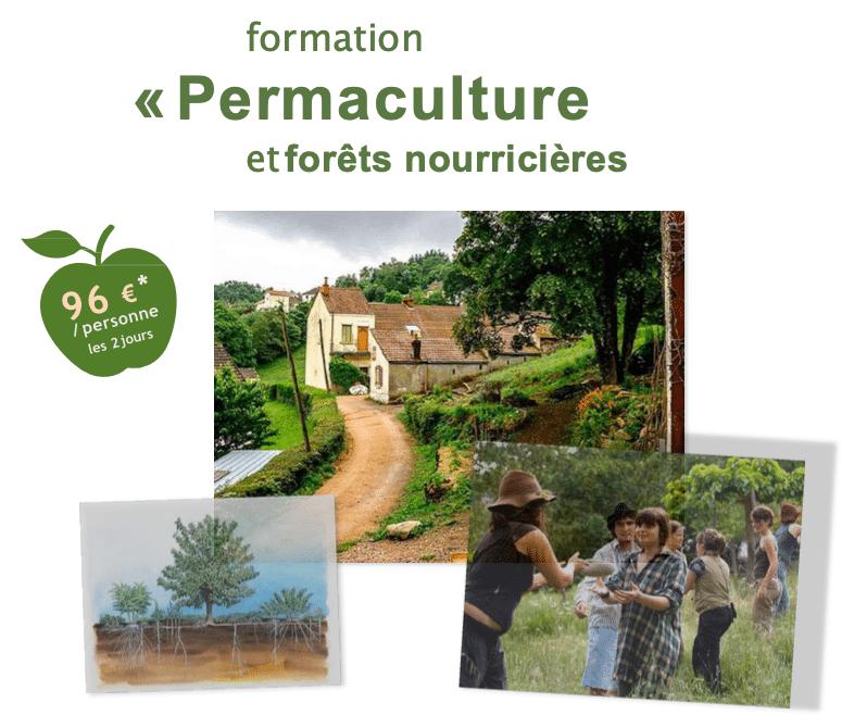 Formation: permaculture et forêts nourricières